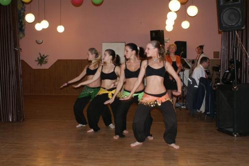Ples Matica 2011